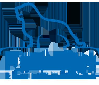 FanRat Braunschweig e.V.